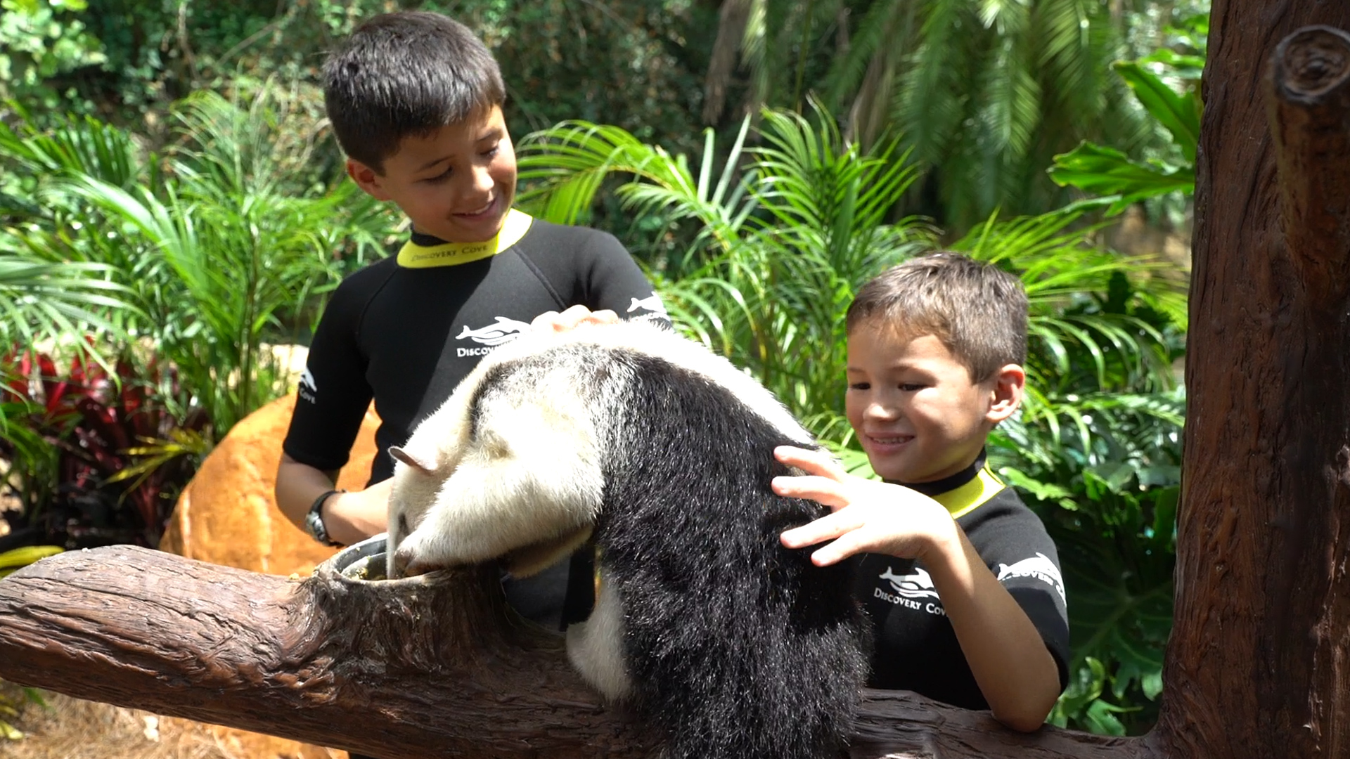 The Animal Trek Tour is just one of the new experiences at Discovery Cove in Orlando.