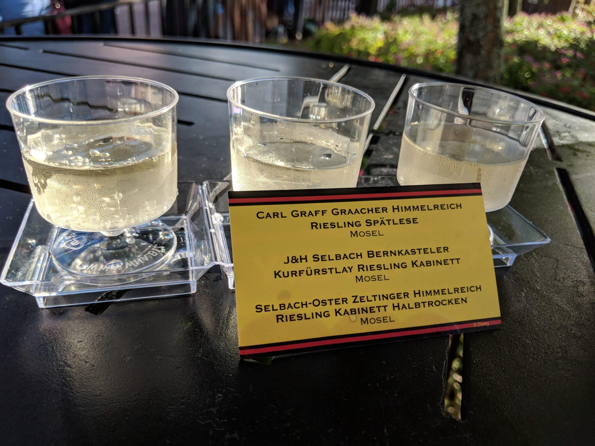Try different wines with the Riesling Flight at Food & Wine.