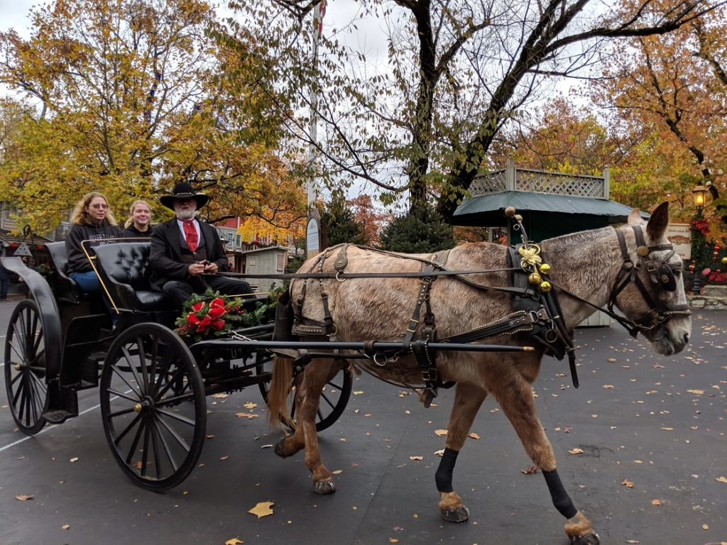 Holiday carriage ride at Silver Dollar City's An Old Time Christmas