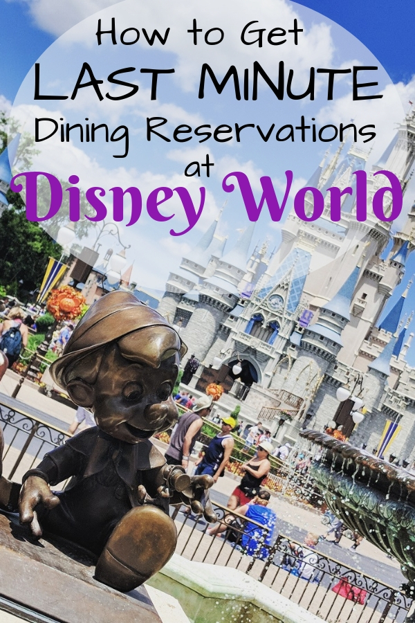 Ever wonder how to people get those last minute dining reservations at Disney World? Check out these tips and soon you'll be eating with the Disney Princesses in no time! #Disneydining #DisneyWorldtips #DisneyTips #traveltips