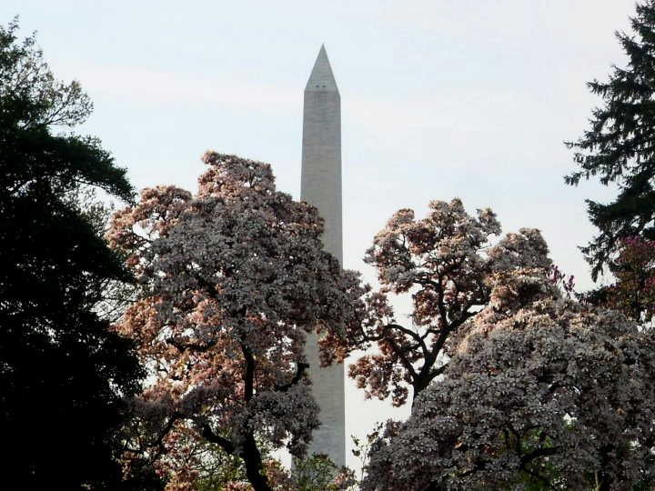 We got to explore all of Washington DC when we were stationed on Andrews AFB, Maryland.