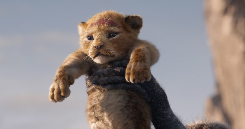 Presenting the future king Simba in the live action remake of The Lion King.