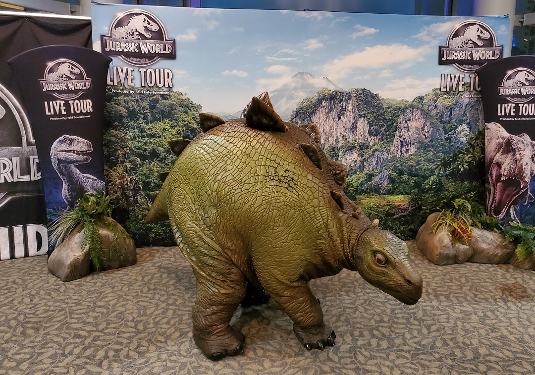 Baby stegosaurus, Olive, from the Jurassic World Live Tour.