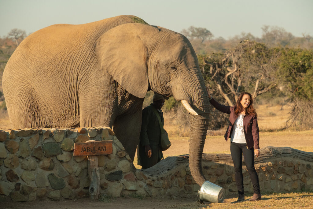 Kate (Kristin Davis) petting an elephant in Netflix's Holiday in the Wild.